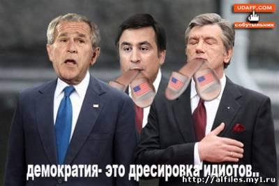 Карикатура на Буша, Саакашвили и Ющенко: Демократия - это дриссировка идиотов...
